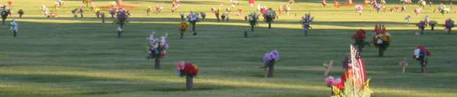 bayer_cemetery plot