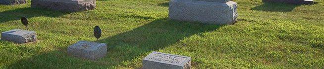 bayer_cemetery_tomb_field